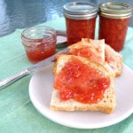 a piece of bread with sour cherry preserves.