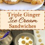 pinterest image for triple ginger ice cream sandwiches
