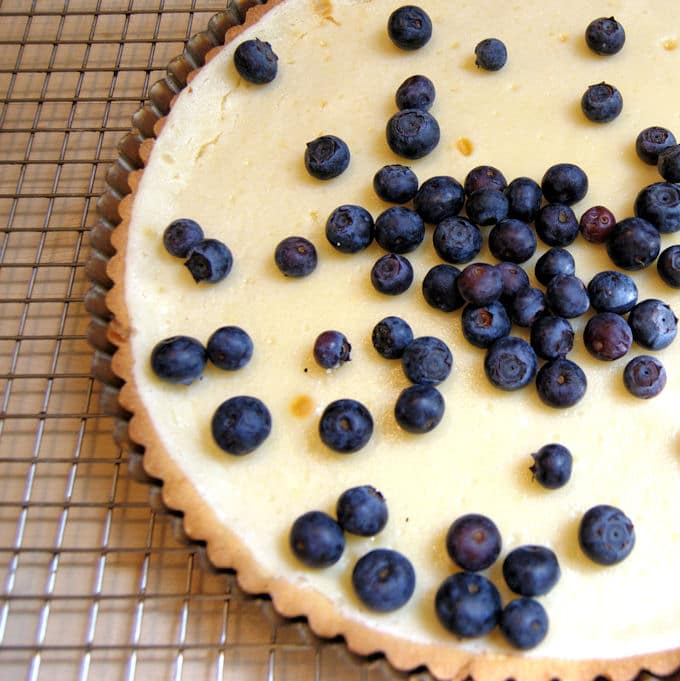 a blueberry cheesecake tart on a cooling rack