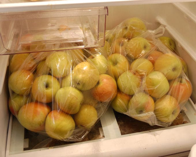 two large bags of gold rush apples in a refrigerator