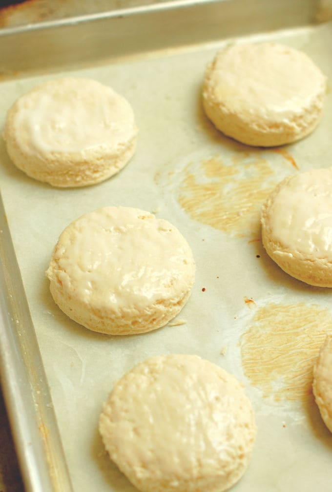 a tray of unbaked buttermilk biscuits