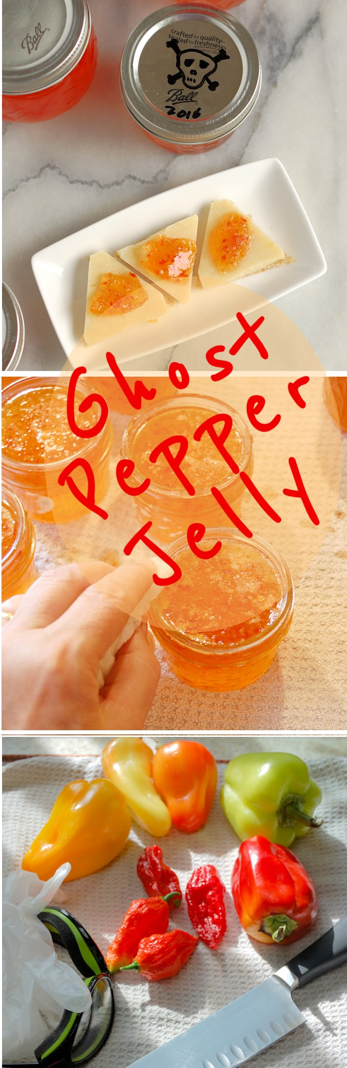 Sweet-Hot Ghost Pepper Jelly is easy to make and it's not THAT hot. #spicy #easy #sweet #best #canning #preserves #homemade #fresh