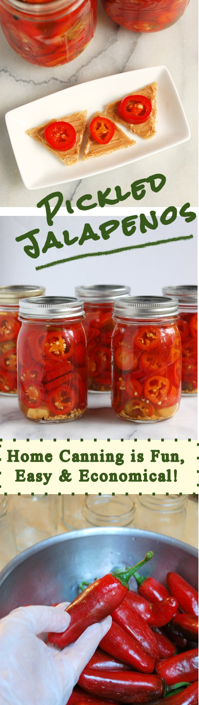Save the taste of summer with home-canned Pickled Jalapeno peppers.