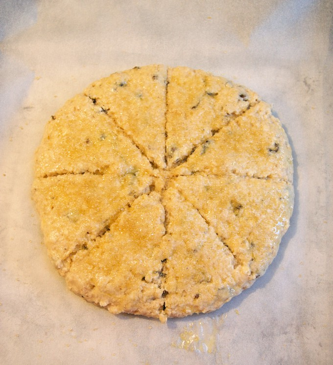 date-spice-scones-oven ready
