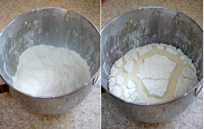 mashed potato craisin bread