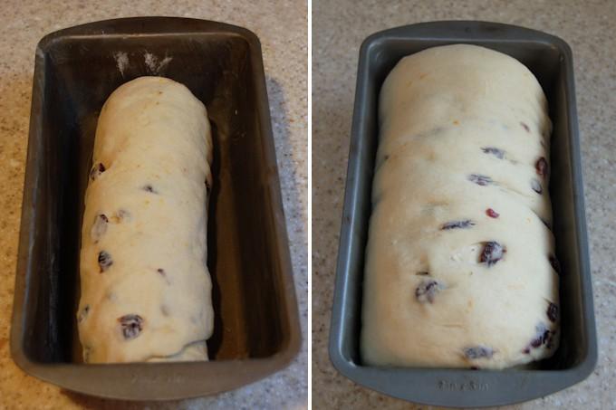 mashed potato craisin bread proofed