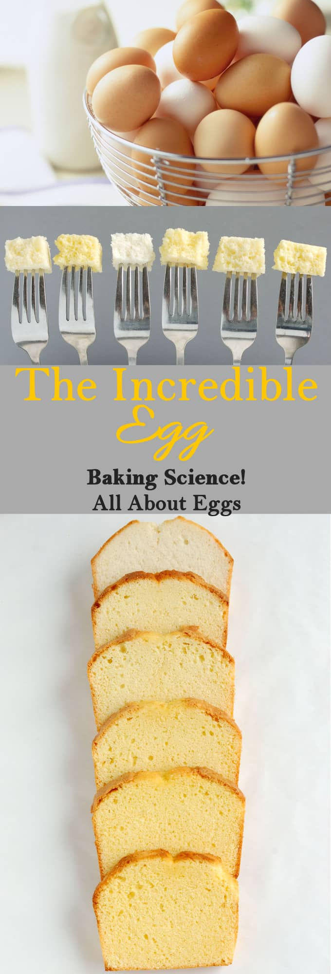What are egg yolks and whites made of? Why do egg white whip up stiff but yolks don't? Learn all about this essential baking ingredient.