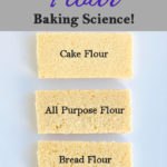 Slices of cake on a white background. Text overlay says Flour, baking scienc.