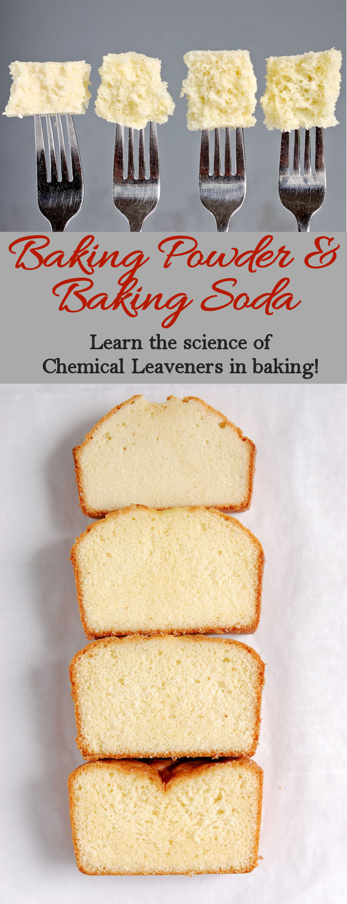 Learn How salt & leaveners can dramatically change the outcome of your cake. Free series of baking classes all about cake batter.