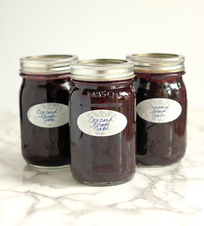 Concord Grape Jame with Vanilla
