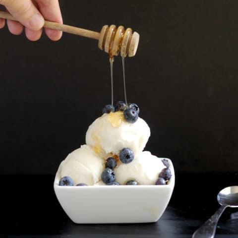 frozen yogurt with honey and vanilla bean