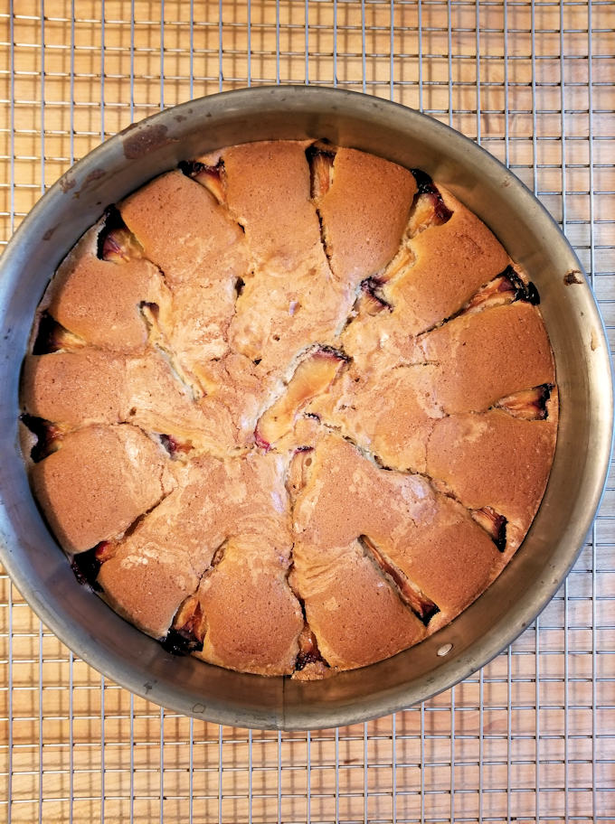 plum cake with cardamom cooling on a rack