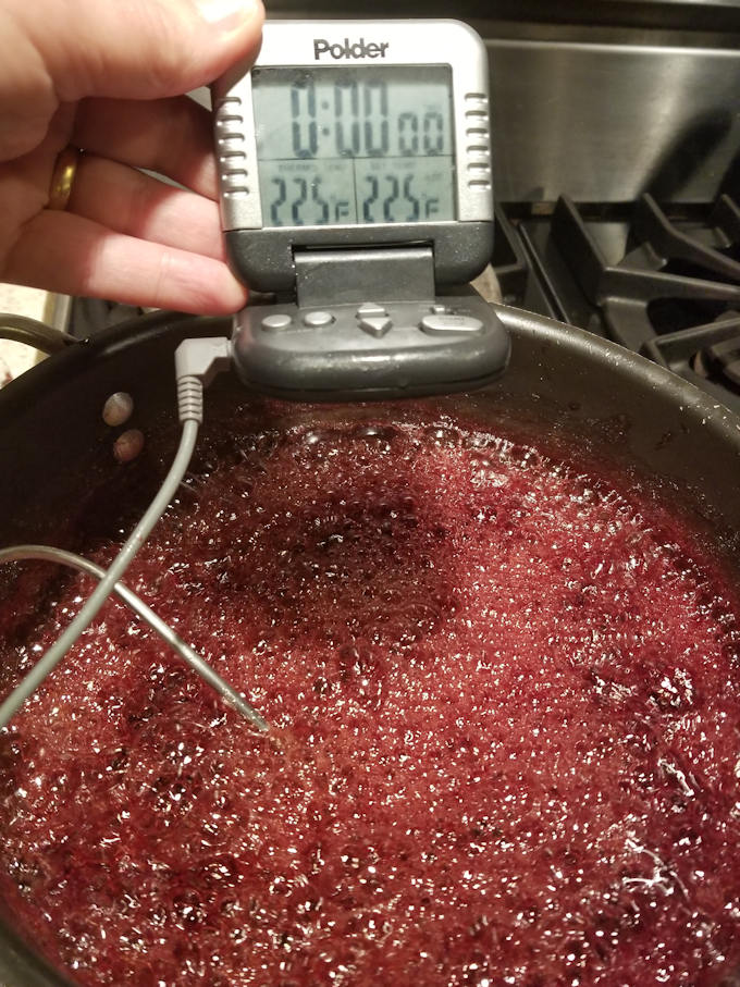 cooking blackberry pate de fruit