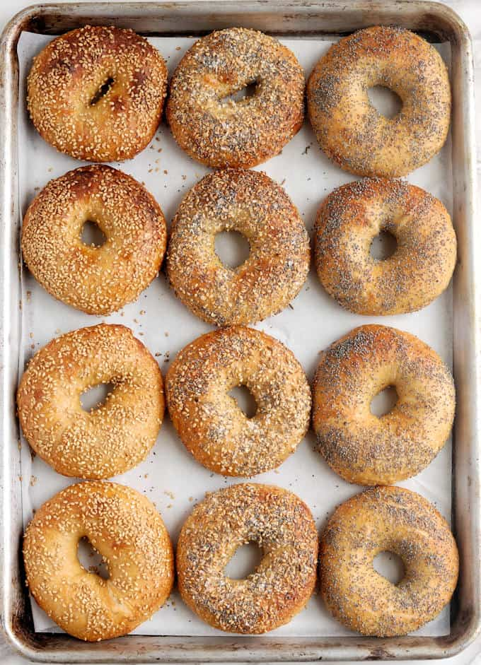 A tray of freshly baked bagels