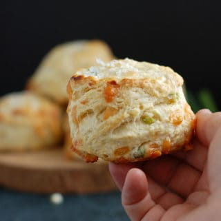 A hand holding one Irish Cheddar & Scallion scones against a dark background.