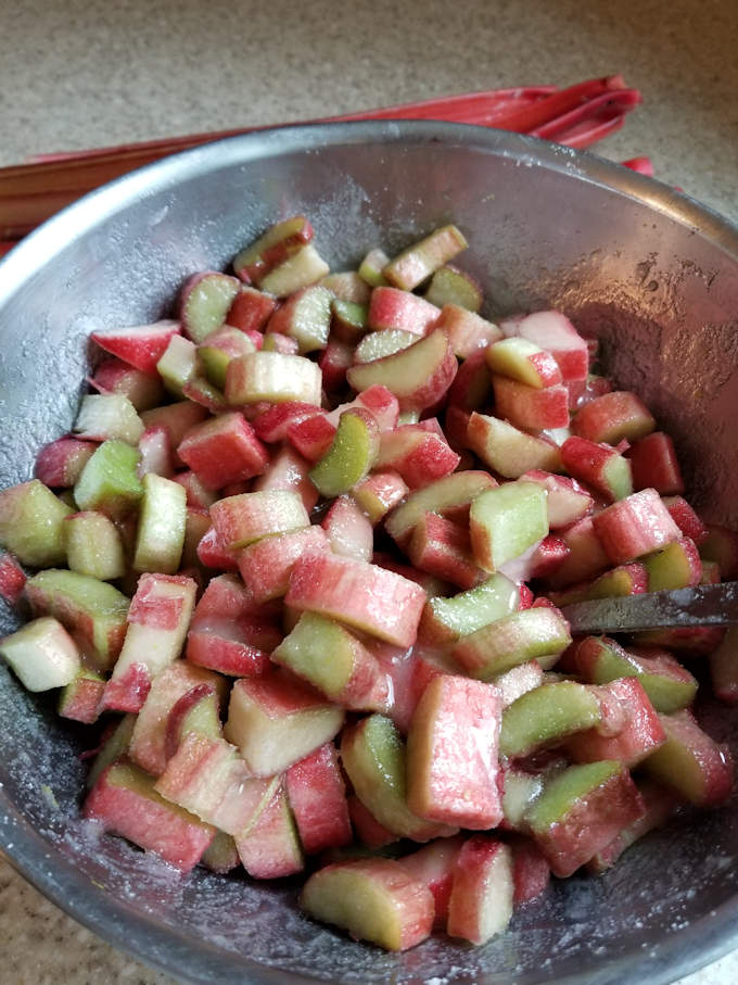 A bowl of chopped rhubarb coated with sugar syrup.