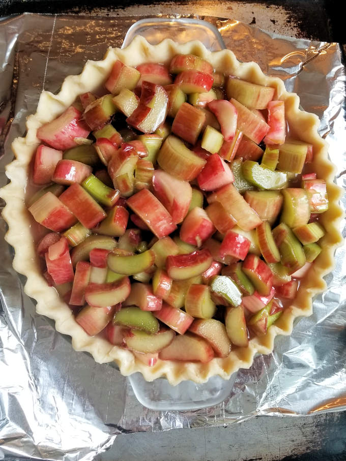 an unbaked pie shell filled with rhubarb