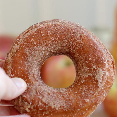 a hand holding an apple cider donut