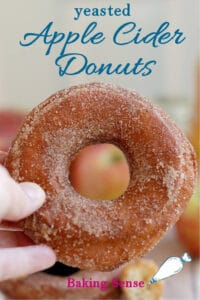 a pinterest image for yeasted apple cider donut recipe