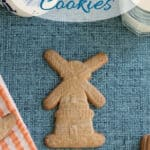 a pinterest image for speculaas cookie recipe