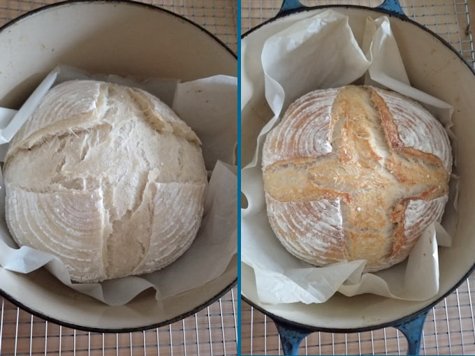 sourdough loaves baking in a dutch oven, after 20 minutes and after 40 minutes