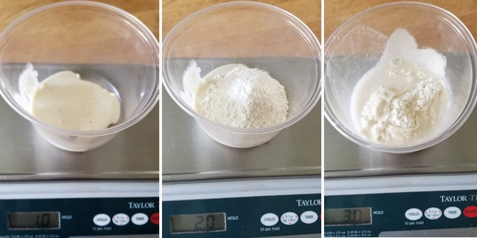 three photos showing how to feed a small starter