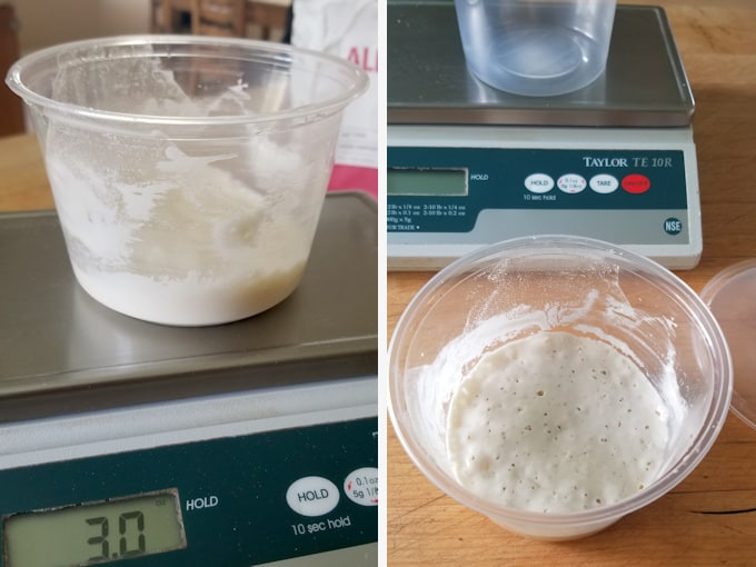 a 3 oz starter right after feeding and after 24 hours