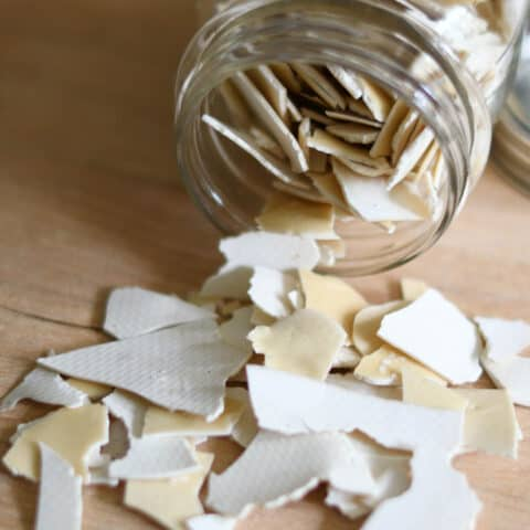 dried starter chips spilled from a jar