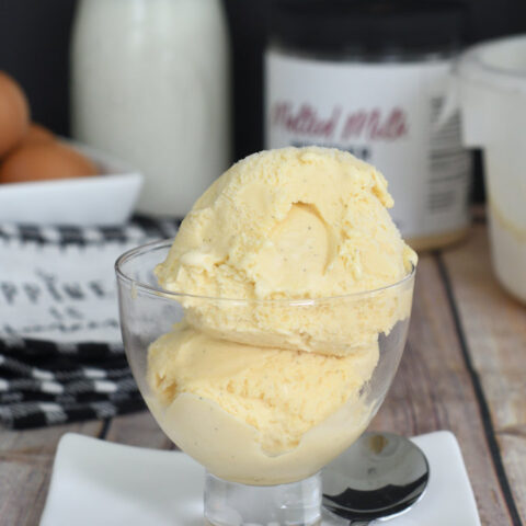 a bowl of malted milk ice cream