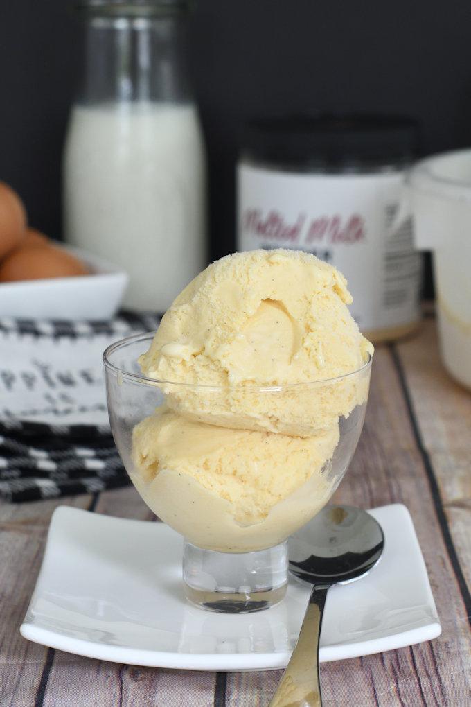 a dish of malted milk ice cream