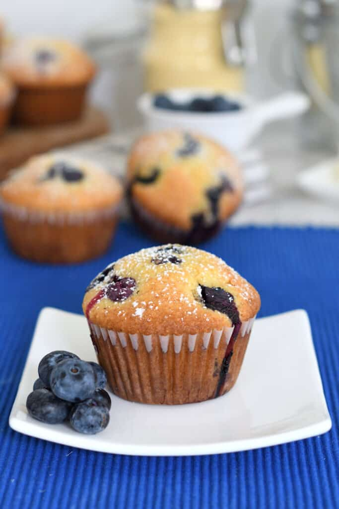 a blueberry cornbread muffin on a white plate