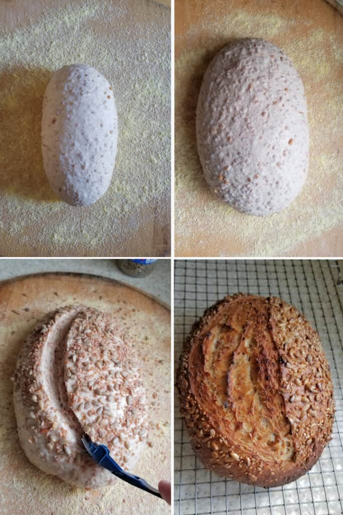 four photos showing how to shape, rise, score and bake a loaf of sourdough cracked wheat bread