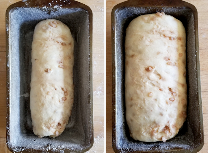 two photos showing sourdough suikerbrood before and after rising.