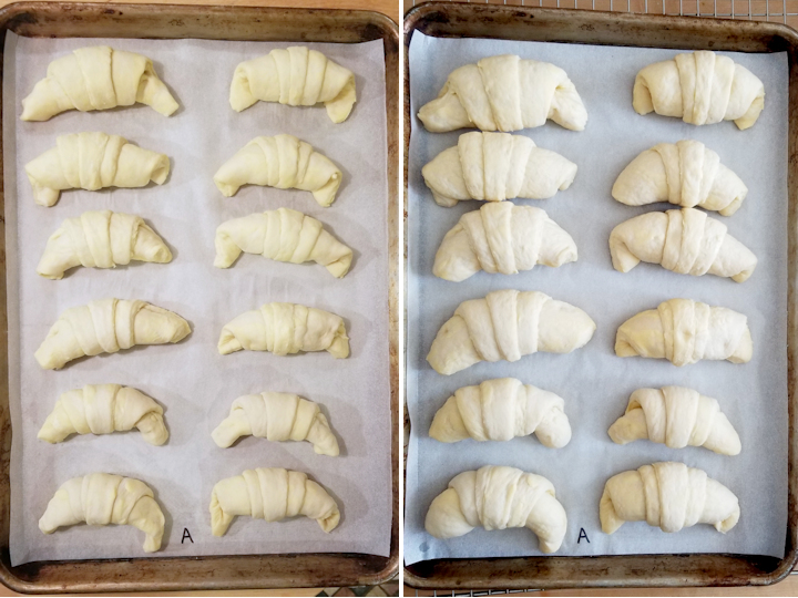 before and after photos of proofing almond croissants