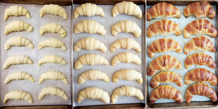 three photos showing croissants before and after rising and after baking