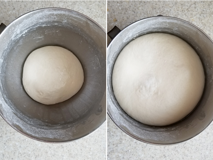 pita dough before and after rising