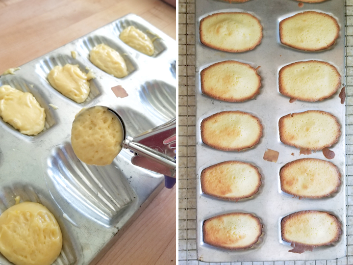 showing madeleines before and after baking