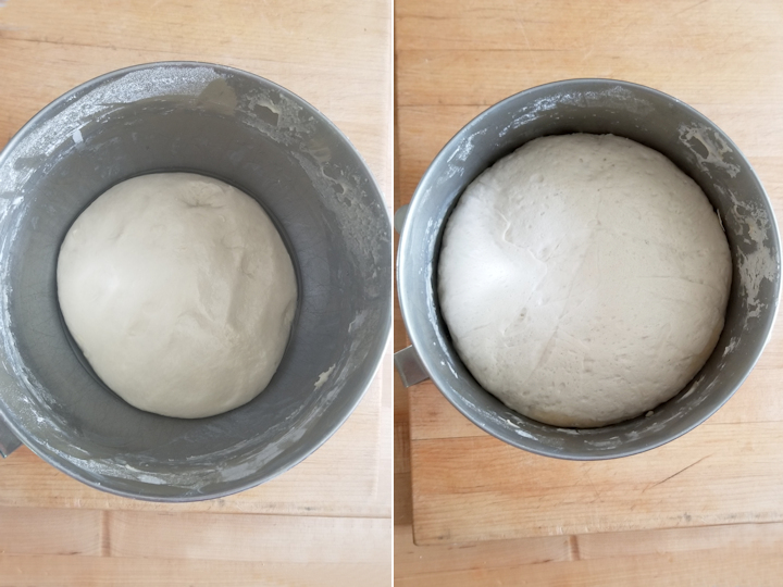two bowls with sourdough before and after fermentation