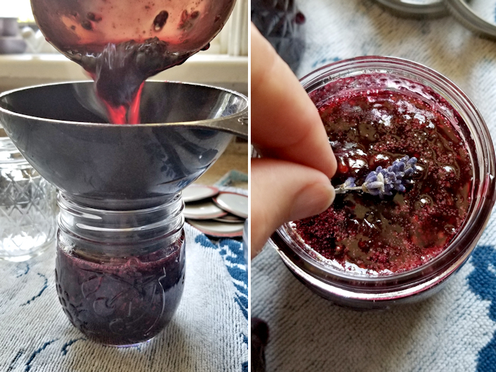 a photo of a funnel in a canning jar with preserves being poured. Placing a lavender blossom in a jar of blackberry preserves.