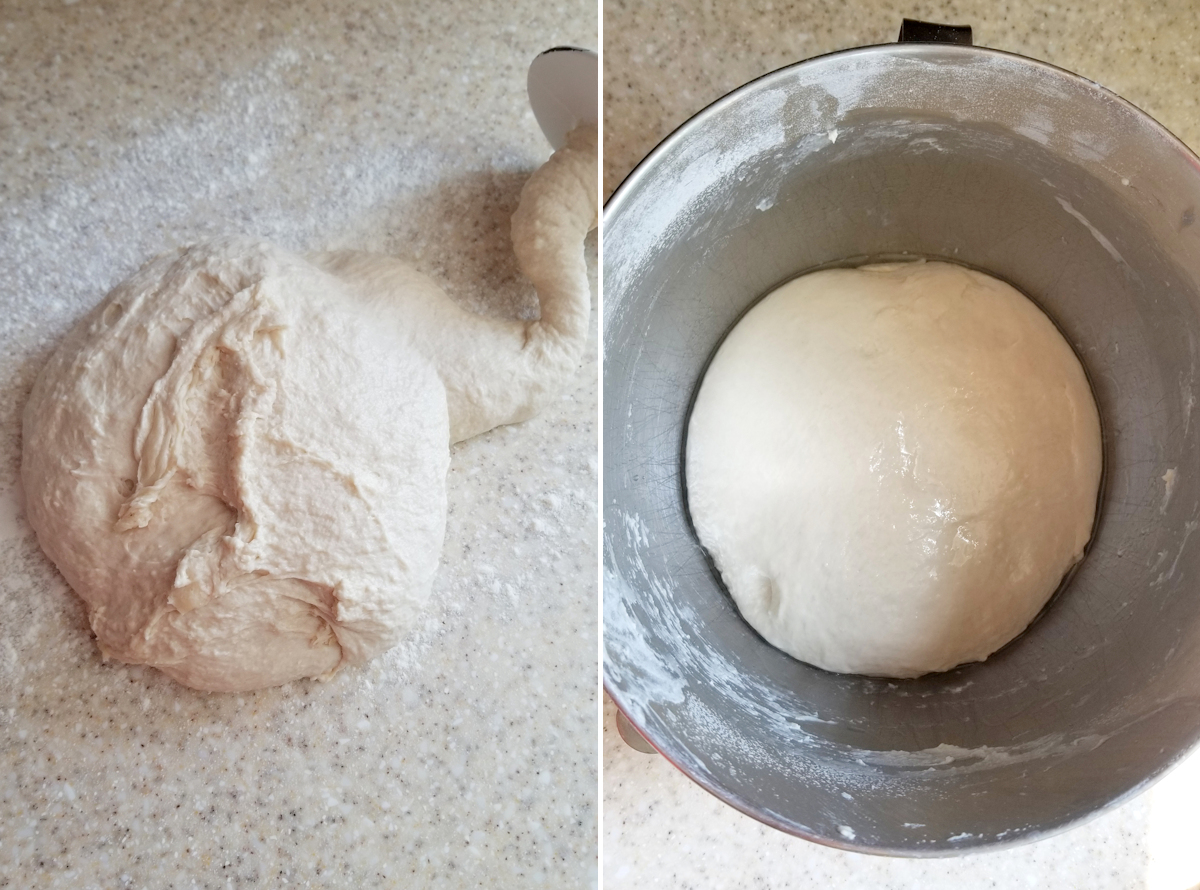 two photos showing sourdough pretzel roll dough after mixing and in a bowl for fermentation